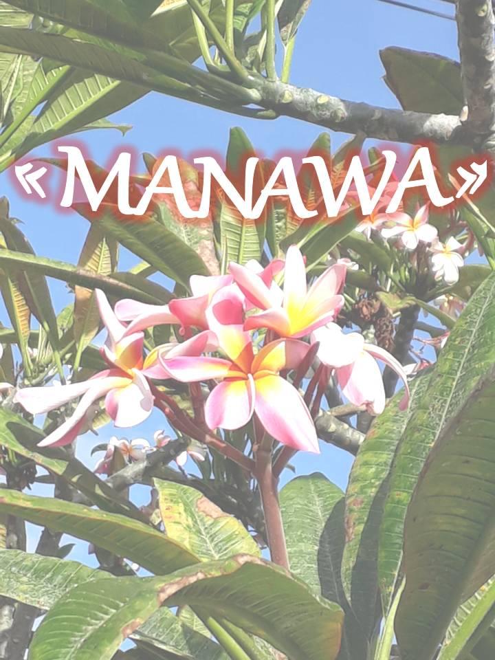 L'attribut alt de cette image est vide, son nom de fichier est Image-soin-Manawa-1.jpg.